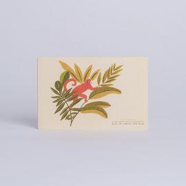 Set Cartes postales Les animaux - Season Paper
