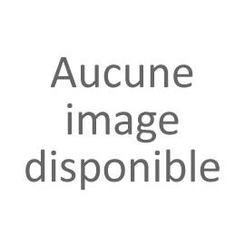 INSEPARABLES-ETOILE boucles crochets asymétriques blanches Les inseparables - Franck Herval